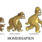 Como dar uma aula sobre a teoria da evolução humana