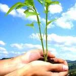 A legalização das áreas rurais de proteção ambiental