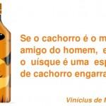 Frase engraçada de Vinícius de Moraes vira placa debar