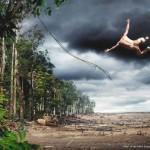 Nem Tarzan escapa à devastação da Amazônia