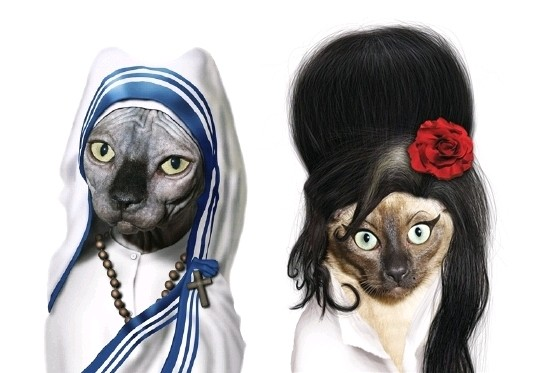 Gatas - Madre Teresa de Calcutá e Amy Winehouse