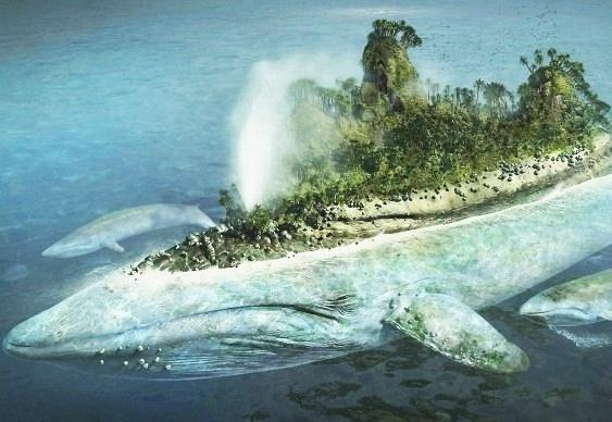 Ilha flutuante - papel de parede