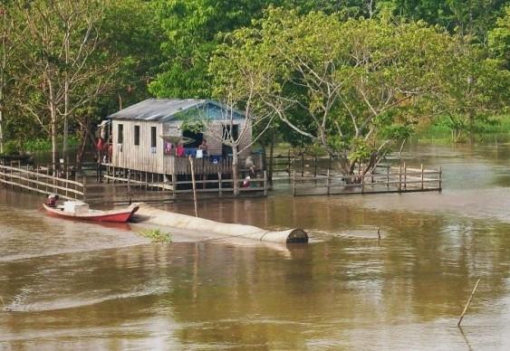 Margem esquerda do Rio Solimões