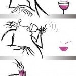 Arte da degustação de vinhos na terra da cachaça