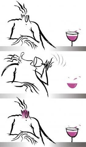 Degustação de vinhos