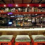 Ideia de projeto para decoração de bar ecológico