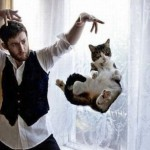 Novas fotos comprovam capacidade de levitação dos gatos