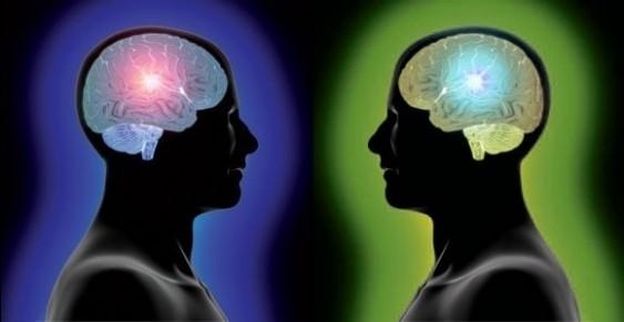 Esquerda x Direita - Cérebros diferentes