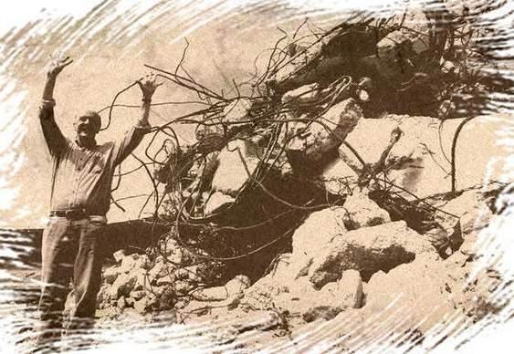 José Serra - destroços