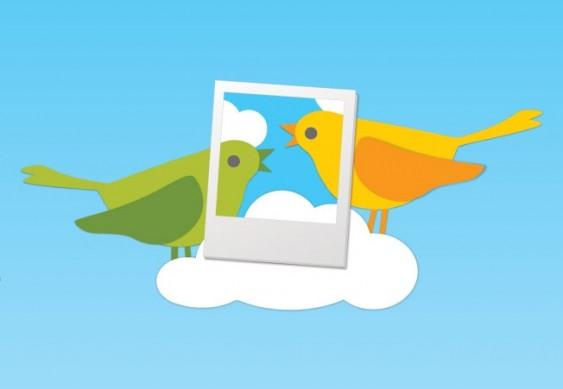 Fotos - novo serviço próprio do Twitter