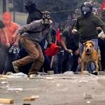 O viralata Salsicha, cão herói, protetor dos fracos e dos oprimidos