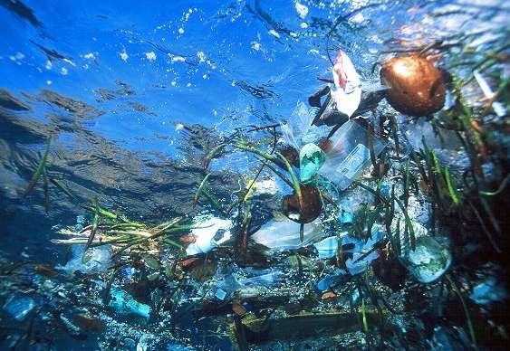 Extinção da vida marinha