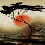 Poema de Suely Sousa, de Recife, em homenagem aos japoneses