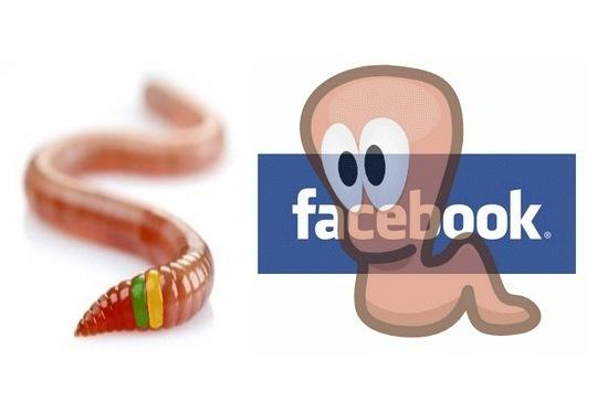 Facebook - roubo de dados bancários