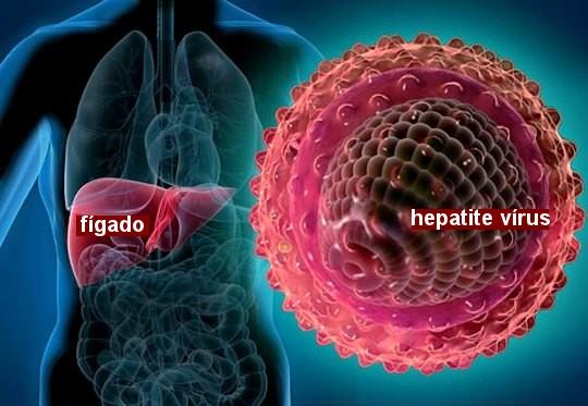 Vírus da hepatite no fígado