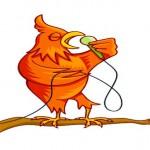 Pássaros mudam jeito de cantar devido ao barulho das cidades