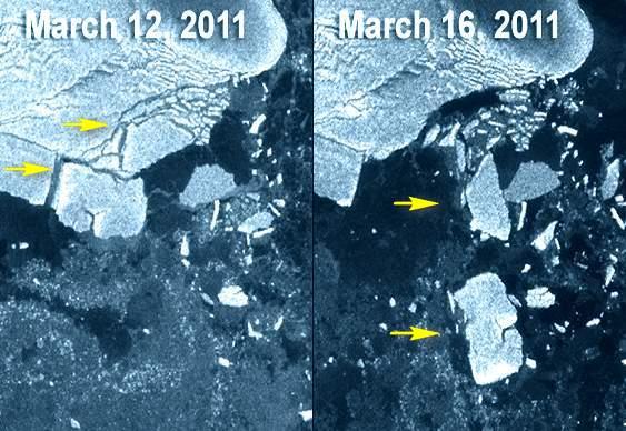 Tsunami no Japão afeta Polo Sul