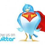 Metade dos sites mais importantes da rede não usa botões do Twitter