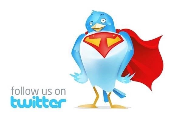 Botão Siga-nos do Twitter