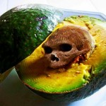 O abacate é um bicho-papão para quem faz dieta para emagrecer?