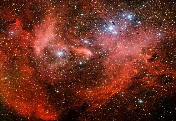 Constelação da Galinha Fugitiva