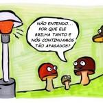 A inveja e o preconceito de classe nas condecorações a Lula