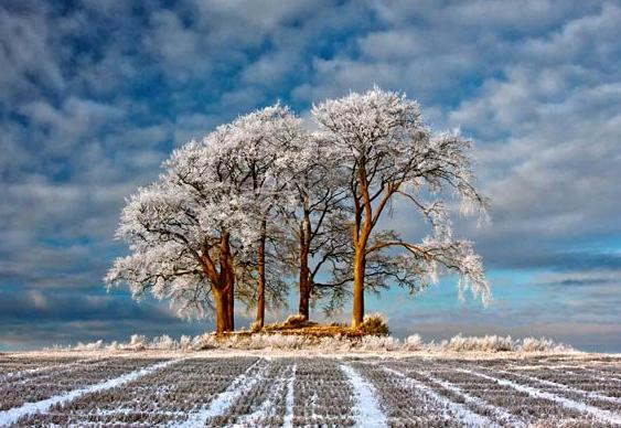 Foto vencedora Take a View - Landscape Photographer of the Year 2011