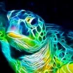 Tartarugas marinhas ameaçadas de extinção por vírus