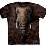 Vida selvagem em camisetas com estampas hiper-realistas