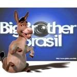 Os mais burros do BBB: quem apresenta, participa ou assiste?