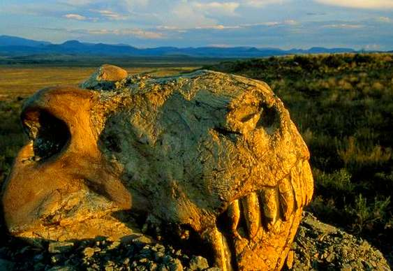 Dinossauro período Permiano