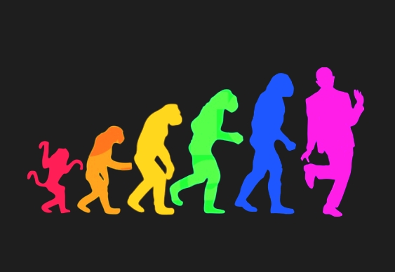 Gay Evolution