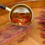 Pintura de peixinhos dourados sobre resina com efeito em 3D