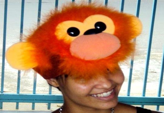 Carnaval - fantasia de macaco