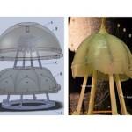 Robojelly gera energia imitando movimentos da água-viva