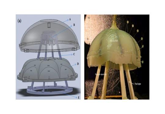 Robojelly - água-viva robô