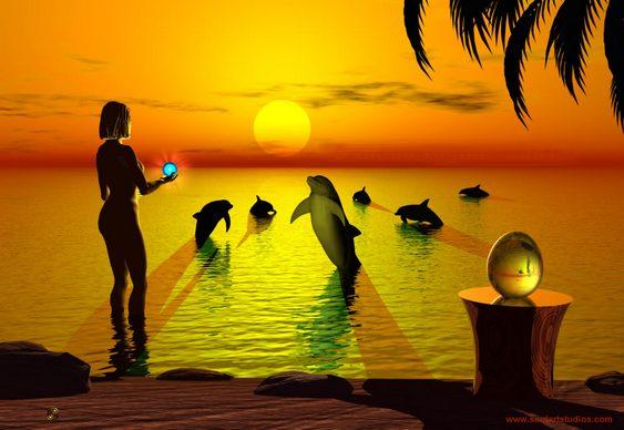 Golfinhos - Direitos Humanos