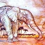 A corrida da gazela cega e a piada do leão e do elefante