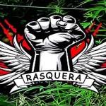 Plantar Cannabis é a 'salvação da lavoura' na crise europeia?