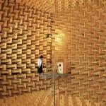 Fique louco em câmara acústica ouvindo os órgãos internos