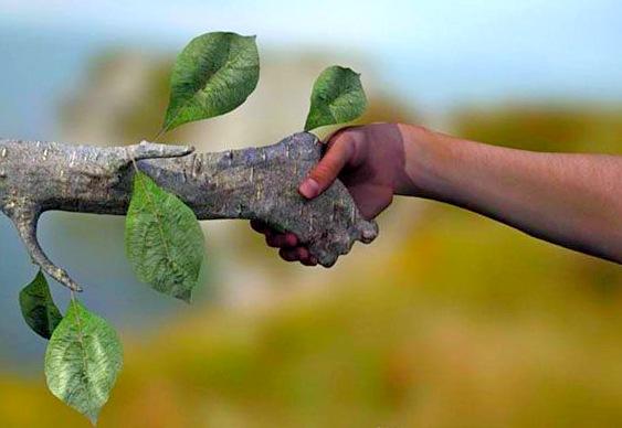Desenvolvimento Ambiental