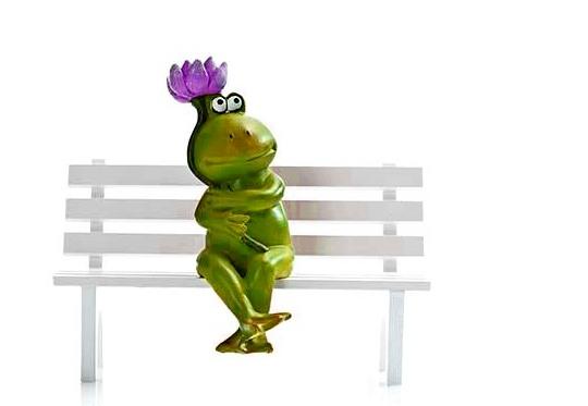 Perereca sentada no banco