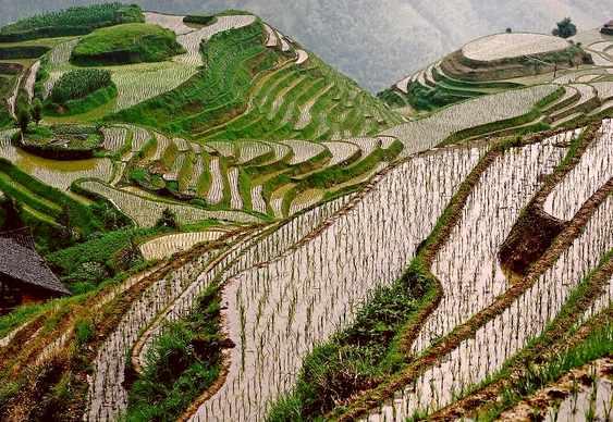 Guilin, Yangshuo e Longsheng