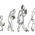 O que devemos saber sobre a banana e ninguém tem coragem de revelar