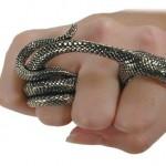 É joia o anel de cobra enrolada e mordendo o dedo indicador
