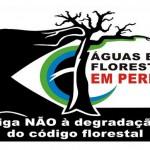 Novo manifesto das entidades científicas sobre o Código Florestal