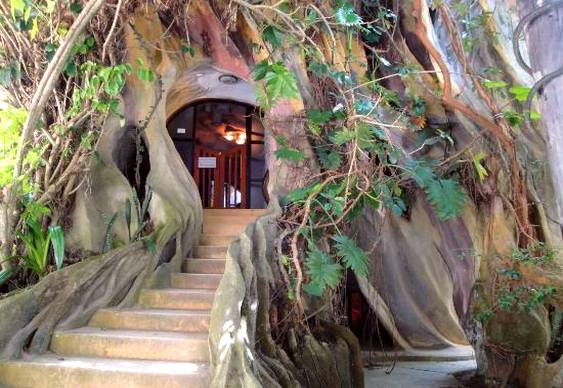 Hang Nga Tree House Hotel Vietnam