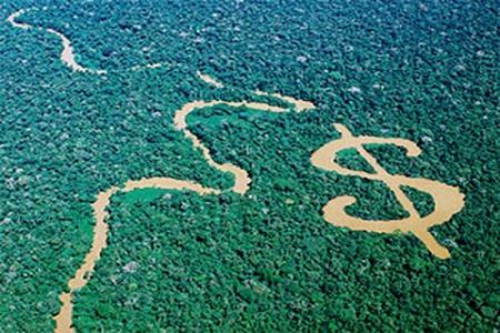 Emissões de Carbono