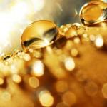 Ouro líquido é transformado em pepitas por bactérias 'alquimistas'