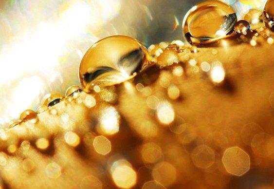 Cloreto de Ouro